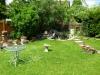 camelot-retreat-gardenpond